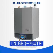 A.O.史密斯 LN1GBQ75-WTB 高效不锈钢管换热器 高效冷凝式采暖炉